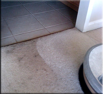 carpet cleaning before/after